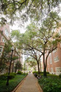part of uf campus